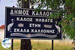 GriechenlandWeb.de Welkom in Skala Kallonis - Foto GriechenlandWeb.de