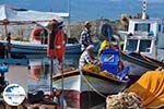 De vissers aan het vissershaventje - Foto GriechenlandWeb.de