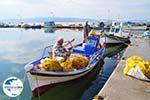 De vissers van Skala Kallonis - Foto GriechenlandWeb.de