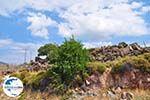 GriechenlandWeb Rotsen onderweg naar Eressos foto 001 - Foto GriechenlandWeb.de
