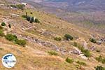 GriechenlandWeb.de Versteende woud Sigri foto1 - Foto GriechenlandWeb.de
