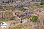 Versteende woud Sigri foto9 - Foto GriechenlandWeb.de