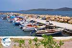 GriechenlandWeb.de Vissersbootjes Sigri - Foto GriechenlandWeb.de