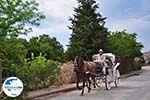 GriechenlandWeb.de Molyvos (Molivos) foto 6 - Foto GriechenlandWeb.de