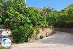 GriechenlandWeb.de Restaurant Eftalou nabij Molyvos foto 4 - Foto GriechenlandWeb.de