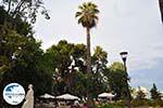 GriechenlandWeb.de Terrasjes Mytilini - Foto GriechenlandWeb.de