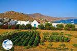 GriechenlandWeb.de Kalafatis | Mykonos | Griechenland - GriechenlandWeb.de foto 1 - Foto GriechenlandWeb.de