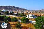 GriechenlandWeb.de Ano Mera | Mykonos | Griechenland - GriechenlandWeb.de foto 1 - Foto GriechenlandWeb.de