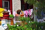 GriechenlandWeb Mykonos Stadt (Chora) | Griechenland | GriechenlandWeb.de foto 79 - Foto GriechenlandWeb.de