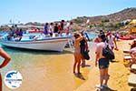 GriechenlandWeb.de Super Paradise Strandt | Mykonos | Griechenland foto 1 - Foto GriechenlandWeb.de