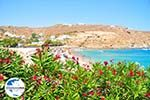 GriechenlandWeb Super Paradise Strandt | Mykonos | Griechenland foto 17 - Foto GriechenlandWeb.de