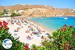 GriechenlandWeb.de Super Paradise Strandt | Mykonos | Griechenland foto 18 - Foto GriechenlandWeb.de