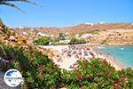 GriechenlandWeb.de Super Paradise Strandt | Mykonos | Griechenland foto 20 - Foto GriechenlandWeb.de