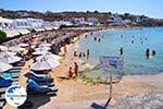 GriechenlandWeb.de Platis Gialos Mykonos | Griechenland | GriechenlandWeb.de foto 4 - Foto GriechenlandWeb.de