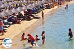 GriechenlandWeb.de Platis Gialos Mykonos | Griechenland | GriechenlandWeb.de foto 7 - Foto GriechenlandWeb.de