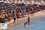 GriechenlandWeb.de Platis Gialos Mykonos | Griechenland | GriechenlandWeb.de foto 9 - Foto GriechenlandWeb.de