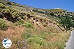 GriechenlandWeb.de Apiranthos | Insel Naxos | Griechenland | Foto 4 - Foto GriechenlandWeb.de