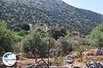 GriechenlandWeb Marathi Paros | Kykladen | Griechenland foto 12 - Foto GriechenlandWeb.de