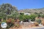 GriechenlandWeb.de Kostos Paros | Kykladen | Griechenland foto 16 - Foto GriechenlandWeb.de
