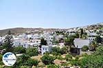 GriechenlandWeb.de Lefkes Paros | Kykladen | Griechenland foto 3 - Foto GriechenlandWeb.de