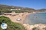 GriechenlandWeb Strand Farangas Paros | Kykladen | Griechenland foto 7 - Foto GriechenlandWeb.de