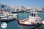 GriechenlandWeb Naoussa Paros | Kykladen | Griechenland foto 45 - Foto GriechenlandWeb.de
