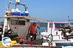 GriechenlandWeb Naoussa Paros | Kykladen | Griechenland foto 91 - Foto GriechenlandWeb.de