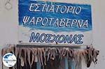 GriechenlandWeb.de Naoussa Paros | Kykladen | Griechenland foto 94 - Foto GriechenlandWeb.de