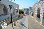 GriechenlandWeb.de Lefkes Paros - Kykladen -  Foto 6 - Foto GriechenlandWeb.de