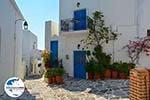 GriechenlandWeb.de Lefkes Paros - Kykladen -  Foto 19 - Foto GriechenlandWeb.de
