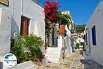 GriechenlandWeb.de Lefkes Paros - Kykladen -  Foto 22 - Foto GriechenlandWeb.de