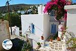 GriechenlandWeb Lefkes Paros - Kykladen -  Foto 32 - Foto GriechenlandWeb.de