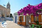GriechenlandWeb.de Lefkes Paros - Kykladen -  Foto 43 - Foto GriechenlandWeb.de