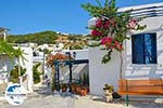 GriechenlandWeb.de Lefkes Paros - Kykladen -  Foto 46 - Foto GriechenlandWeb.de