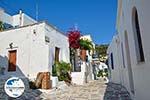 GriechenlandWeb.de Lefkes Paros - Kykladen -  Foto 63 - Foto GriechenlandWeb.de