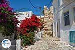 GriechenlandWeb.de Parikia Paros - Kykladen -  Foto 52 - Foto GriechenlandWeb.de