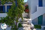 GriechenlandWeb.de Parikia Paros - Kykladen -  Foto 69 - Foto GriechenlandWeb.de