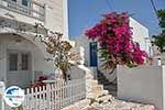 GriechenlandWeb.de Parikia Paros - Kykladen -  Foto 72 - Foto GriechenlandWeb.de