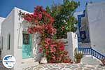 GriechenlandWeb.de Parikia Paros - Kykladen -  Foto 73 - Foto GriechenlandWeb.de