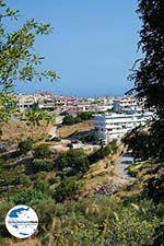 GriechenlandWeb Embonas Rhodos - Rhodos Dodekanes - Foto 7 - Foto GriechenlandWeb.de
