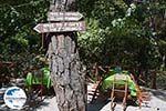 GriechenlandWeb.de Epta Piges - Zeven bronnen Rhodos - Rhodos Dodekanes - Foto 144 - Foto GriechenlandWeb.de