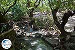 GriechenlandWeb.de Epta Piges - Zeven bronnen Rhodos - Rhodos Dodekanes - Foto 148 - Foto GriechenlandWeb.de