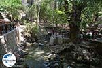 GriechenlandWeb.de Epta Piges - Zeven bronnen Rhodos - Rhodos Dodekanes - Foto 149 - Foto GriechenlandWeb.de