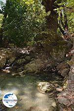 GriechenlandWeb.de Epta Piges - Zeven bronnen Rhodos - Rhodos Dodekanes - Foto 156 - Foto GriechenlandWeb.de