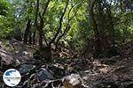GriechenlandWeb.de Epta Piges - Zeven bronnen Rhodos - Rhodos Dodekanes - Foto 164 - Foto GriechenlandWeb.de