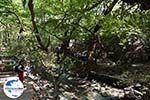 GriechenlandWeb.de Epta Piges - Zeven bronnen Rhodos - Rhodos Dodekanes - Foto 166 - Foto GriechenlandWeb.de