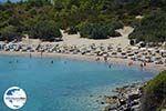 GriechenlandWeb.de Glystra beach Kiotari Rhodos - Rhodos Dodekanes - Foto 421 - Foto GriechenlandWeb.de