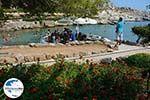 Kalithea Rhodos - Rhodos Dodekanes - Foto 529 - Foto GriechenlandWeb.de
