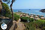 GriechenlandWeb.de Kalithea Rhodos - Rhodos Dodekanes - Foto 553 - Foto GriechenlandWeb.de