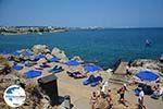 GriechenlandWeb.de Kalithea Rhodos - Rhodos Dodekanes - Foto 599 - Foto GriechenlandWeb.de